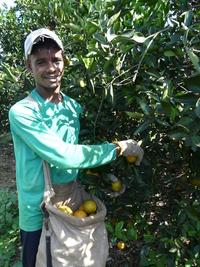 Joan aus dem Nordosten von Brasilien bei seiner Arbeit (Name von der Redaktion geändert) Foto: ci-romero.de